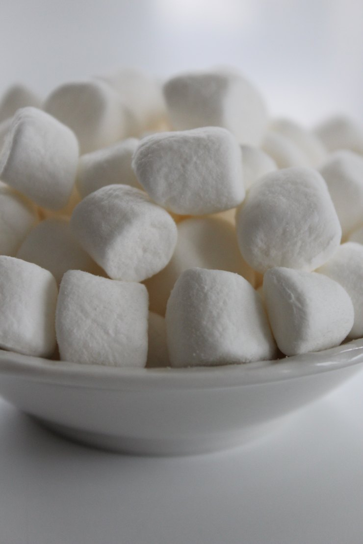 toasting marshmallows, wedding ideas,